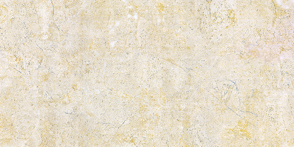 Gạch ốp lát Viglacera BS3601