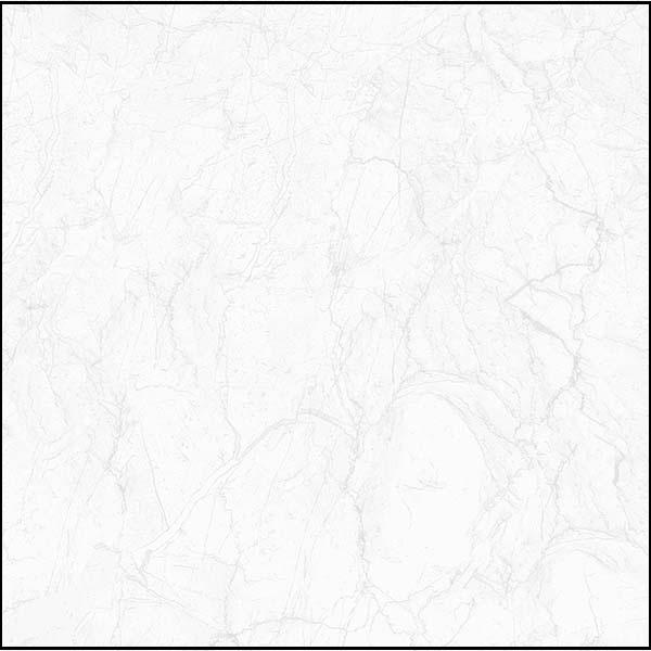 gach-lat-nen-viglacera-ecos-6806