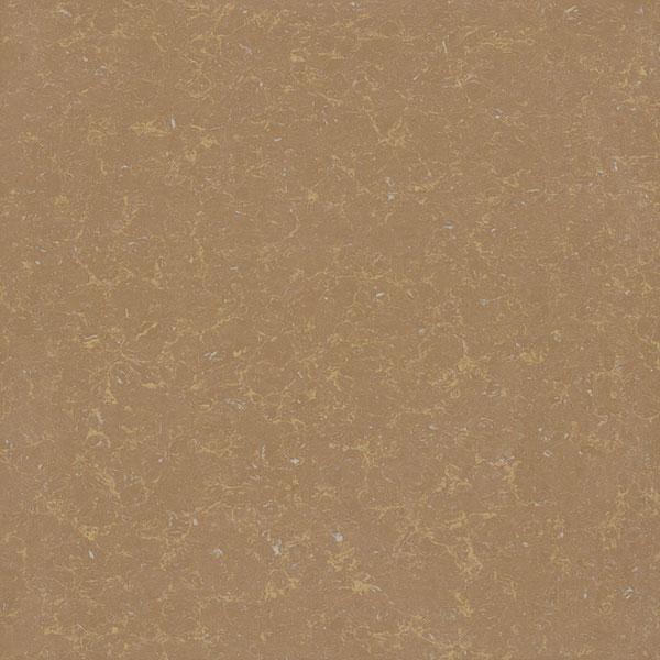 Gạch lát nền Viglacera TS2 810