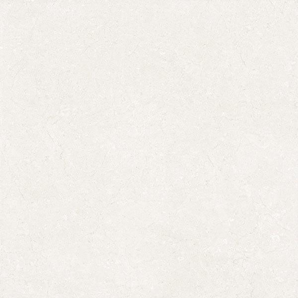 Gạch lát nền Viglacera ECOM 6903