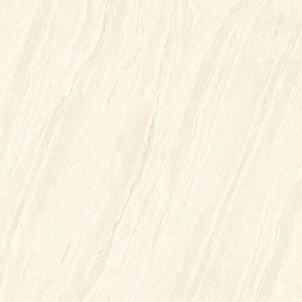Gạch lát nền Viglacera PT 881