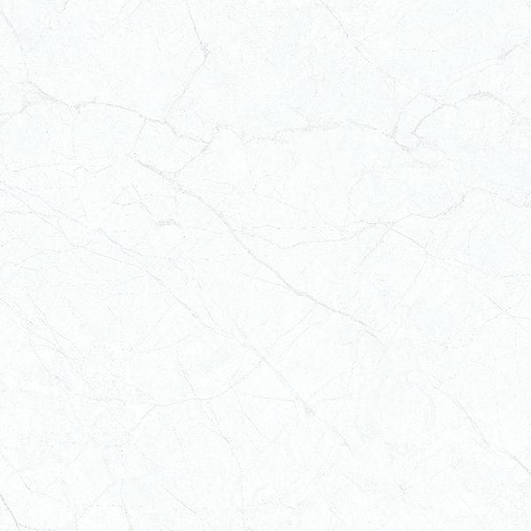 Gạch lát nền Viglacera TB-860