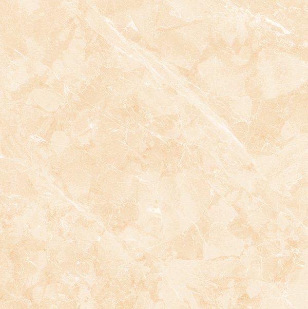 Gạch lát nền Viglacera TB-808