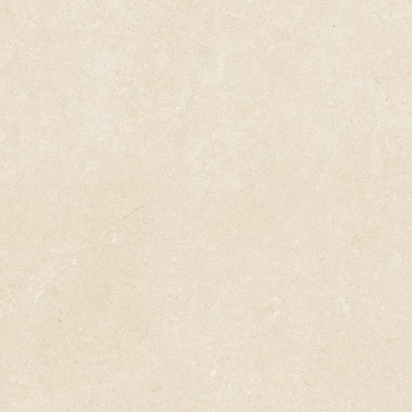 Gạch Viglacera Platinum PT 20-G6601