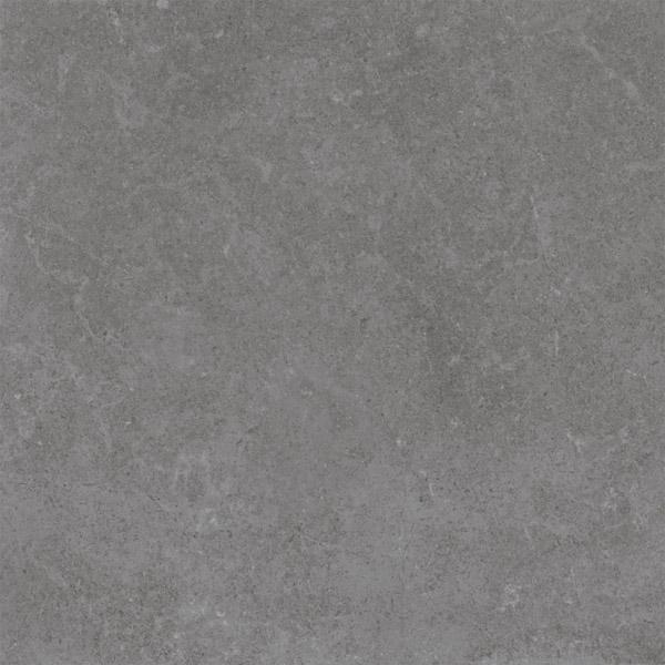 Gạch Viglacera PT20 601
