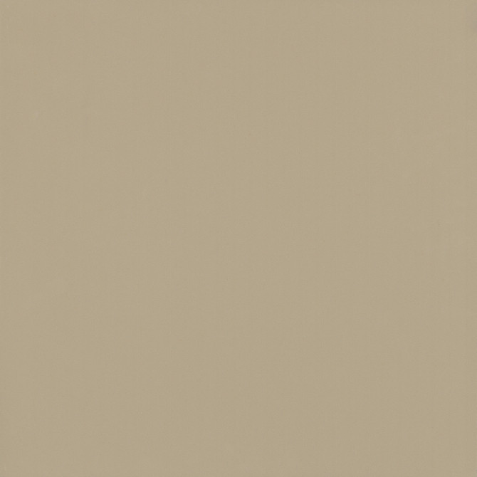 Gạch lát nền Viglacera TS6 602