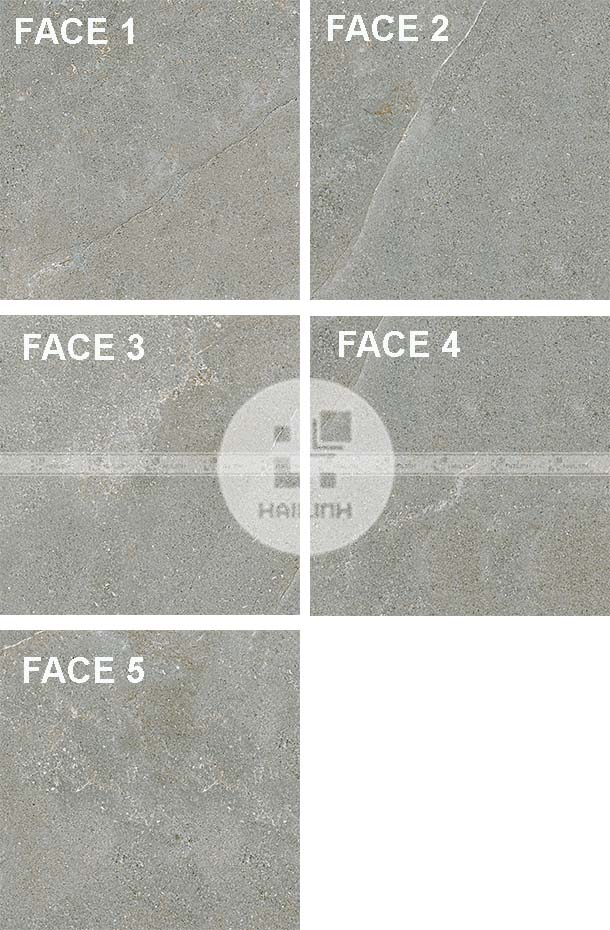 Face gạch Eurotile NGC H03