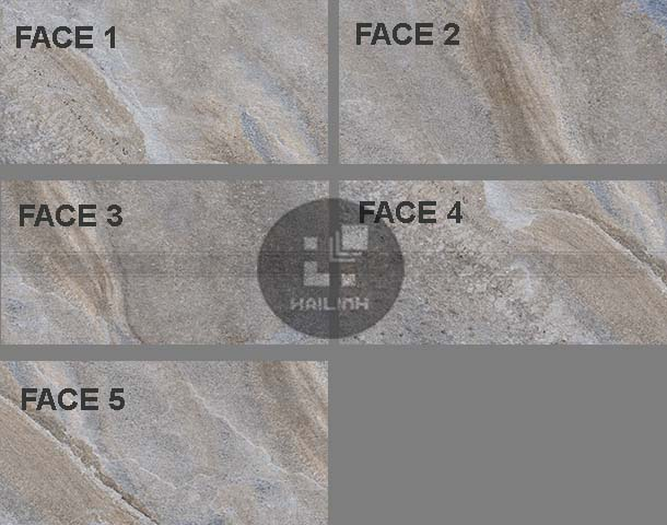 Face gạch Eurotile PHS I03