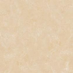 Gạch lát nền Viglacera B 6005