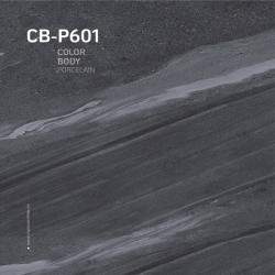Gạch lát nền cao cấp Viglacera CB P601