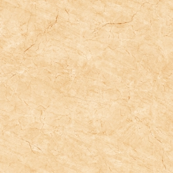 Gạch lát nền Viglacera H 503