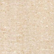 Gạch lát nền Viglacera TS2-621