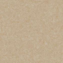 Gạch lát nền Viglacera VG 6002