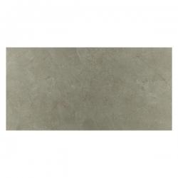 Gạch ốp tường Viglacera UB3634