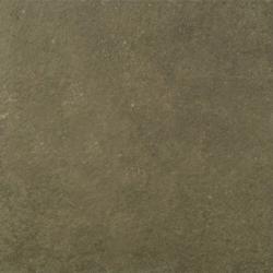 Gạch Viglacera PH 6601
