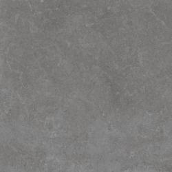 Gạch Viglacera Platinum PT 20-601