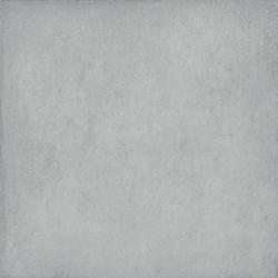 Gạch Viglacera Platinum PT 20-602
