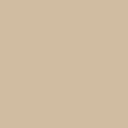 Gạch lát nền Viglacera BN602