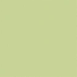 Gạch lát nền Viglacera BN604